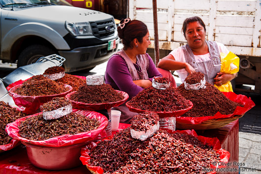 Selling crickets at the Oaxaca market