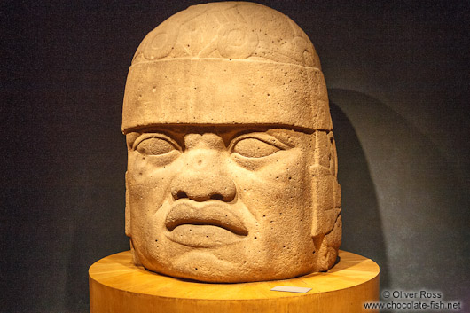 Olmec colossal head at the Mexico City Anthropological Museum