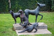 Travel photography:Xoloitzcuitle dogs pose next to their statue at the  Museo Dolores Olmedo in Mexico City, Mexico