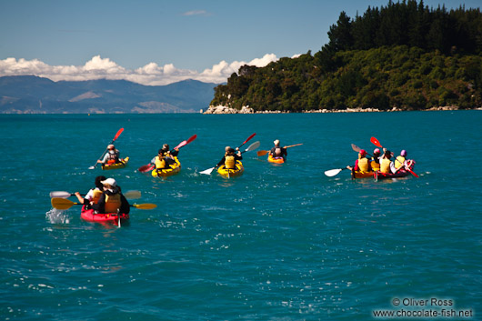 Sea kayaking in the Abel Tasman National Park