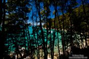 Travel photography:Turquoise waters in Abel Tasman National Park, New Zealand