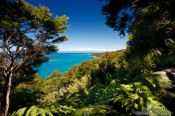 Travel photography:Abel Tasman National Park, New Zealand