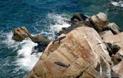 Travel photography:Seals in Abel Tasman National Park, New Zealand