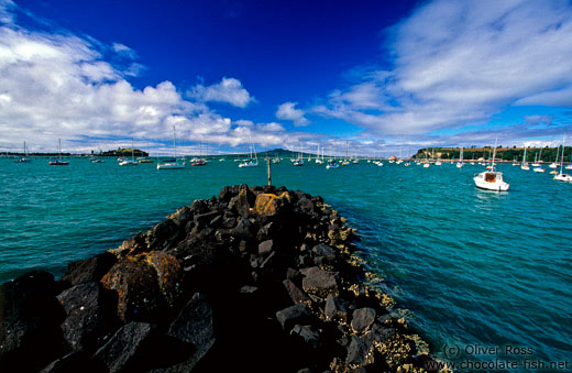 View of Auckland harbour with Rangitoto Island