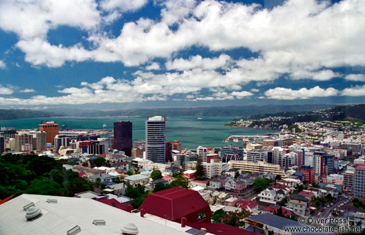 Panorama of Wellington City