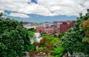 Travel photography:Wellington University, New Zealand