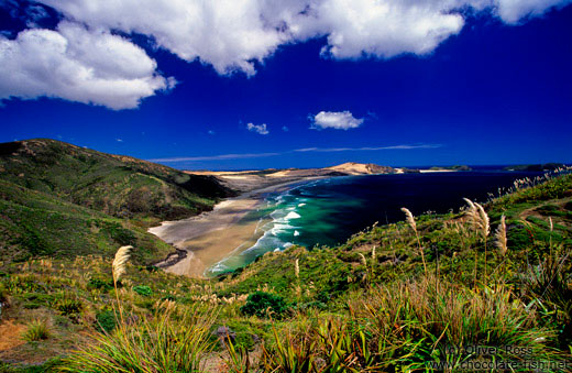 Cape Maria van Diemen with Te Werahi beach