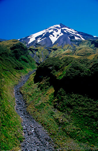 View of Mt Taranaki with gorge