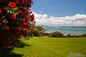 Travel photography:MJ Savage memorial park in Auckland, New Zealand