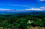 Travel photography:Distant view of the Central Plateau with Tongariro Ntl Park, New Zealand
