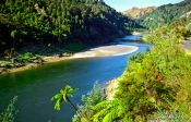 Travel photography:Whanganui River, New Zealand