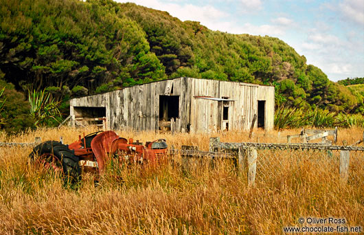 Abandoned Farm on Stewart Island