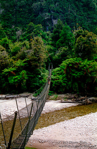 3-wire bridge across a stream on the Heaphy Track