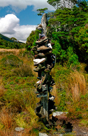 Hikers pole on the Heaphy Track