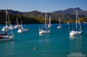 Travel photography:Picton harbour, New Zealand