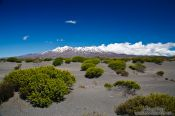 Travel photography:Tongariro National Park from Desert Road, New Zealand