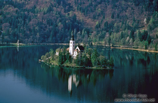 Island with church surrounded by Blejsko jezero (Bled lake)