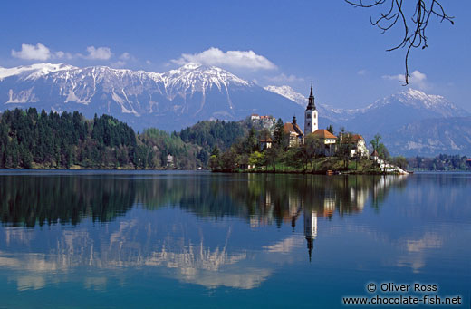 Island with church and Bled Castle reflected in Blejsko jezero (Bled lake) with the Slovenian Alps in the background