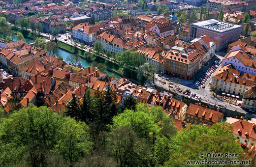 Aerial view of the old town in Ljubljana