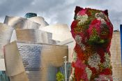 Travel photography:The Jeff Koons Dog sculpture outside the Bilbao Guggenheim Museum, Spain