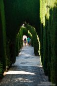 Travel photography:Labyrinth garden in the Generalife of the Granada Alhambra, Spain