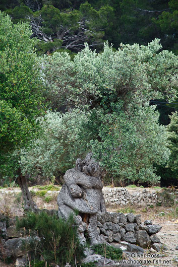 Human embrace sculpted by an olive tree near Son Marroig