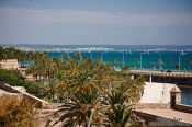 Travel photography:View of Palma harbour, Spain