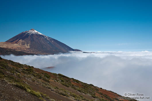 View of the Teide Volcano rising above a sea of clouds