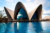 Travel photography:The Valencia Aquarium, Spain