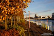 Travel photography:Glasgow River Clyde with trees in autumn colour, United Kingdom