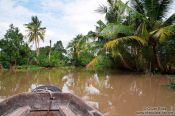 Travel photography:Exploring a Mekong tributary near Can Tho , Vietnam