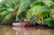 Travel photography:Boat on a Mekong tributary near Can Tho , Vietnam