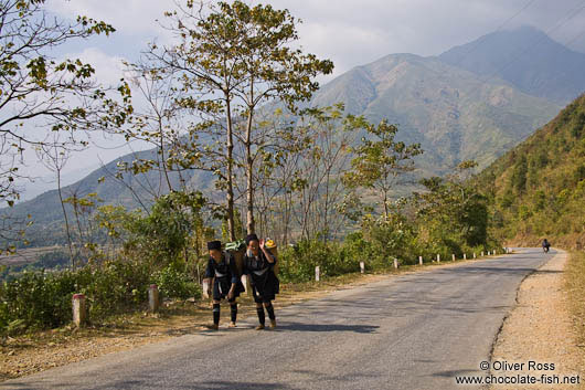 Hmong women carrying wood near Sapa