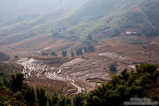Rice terraces near Sapa´s Cat Cat village