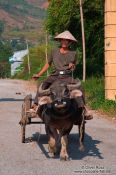 Travel photography:Sapa man on cart , Vietnam